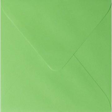 1 Briefumschlag 12,5 x 12,5 cm 125 x 125 mm Gras Grün Verschluss: feuchtklebend