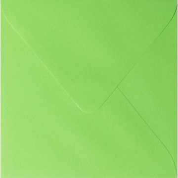 1 Briefumschlag 10,0 x 10,0 cm 100 x 100 mm Hell Grün Verschluss: feuchtklebend